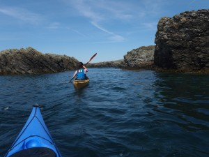 Guided sea kayak trips with Bach Ventures